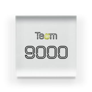 Team 9000 Acrylic Block