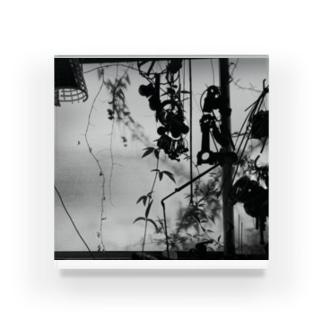黒ガラクタ Acrylic Block