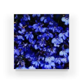 ブルーブルー Acrylic Block