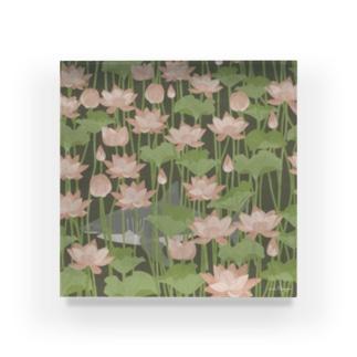 蓮を泳ぐ御池のサメさん Acrylic Block