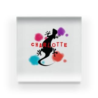 ヤモリcharlotte Acrylic Block