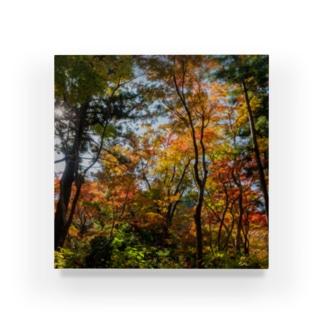 Table Fall Acrylic Block