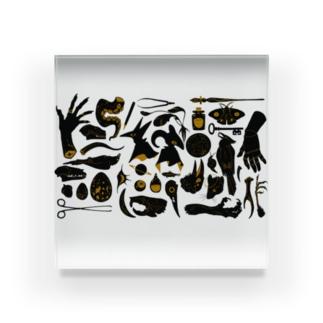 蒐集家の部屋 Acrylic Block