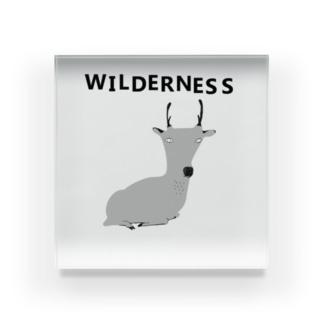 NIKORASU GOのWILDERNESS Acrylic Block