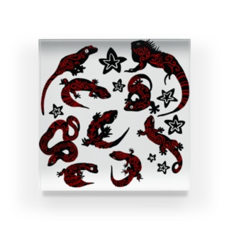 爬虫類(模様入) Acrylic Block