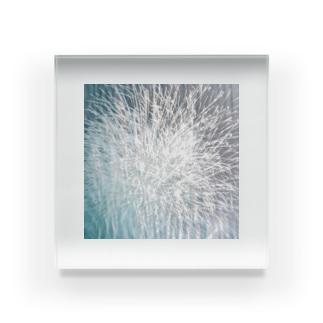 夏 Acrylic Block