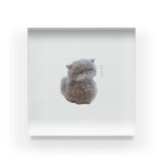 ぱや猫さん Acrylic Block