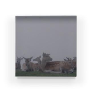 PORTONE, ART, LABORATORY.のFog and deer II Acrylic Block
