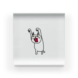 怒り猫 Acrylic Block