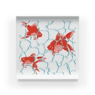 揺らぐ金魚の波紋 Acrylic Block