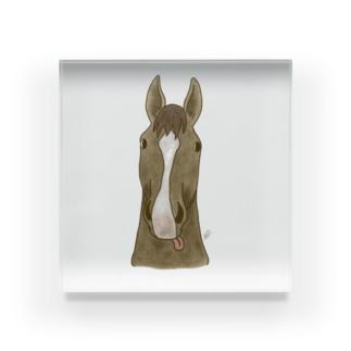 馬の鼻先 Acrylic Block