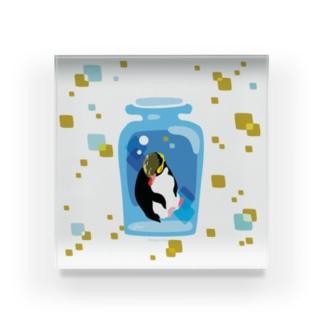 ペンギンの瓶詰めY Acrylic Block