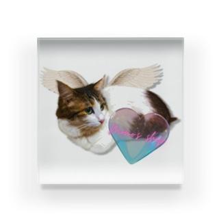 my angel-4 special filter Acrylic Block