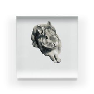 モカちっくシリーズ(数量限定販売) Acrylic Block
