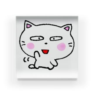 白猫のミャウ 元気ver Acrylic Block