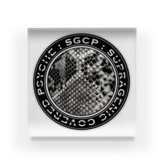 SGCP パイソン グレージュ Acrylic Block