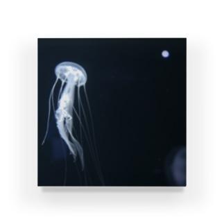 クラゲ Acrylic Block