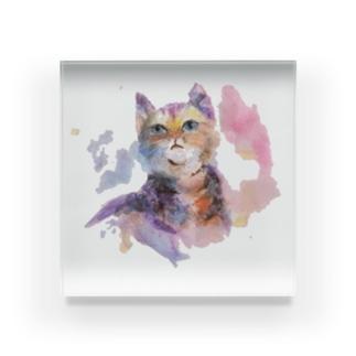 猫さん Acrylic Block