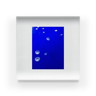 くらげー Acrylic Block