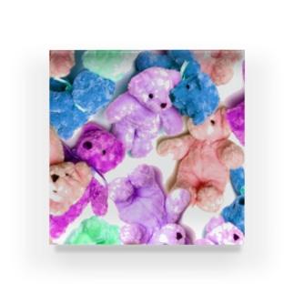 Bear Bear  Acrylic Block
