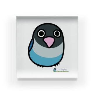 LOVEBIRD BOTAN 前向き Acrylic Block