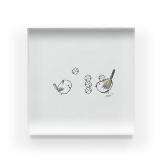 シマエナガたちの飽くなき挑戦 Acrylic Block