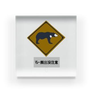 マレー熊出没注意 標識 Acrylic Block