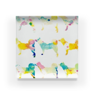 紀州犬MIX【パレット】 Acrylic Block