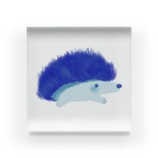 青色ハリネズミ Acrylic Block