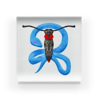 蛍と蛇(色違い) Acrylic Block