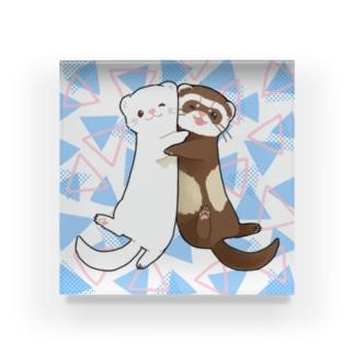 むぎゅっとフェレット ホワイト&セーブル Acrylic Block