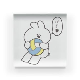 バレー部うさちゃん Acrylic Block