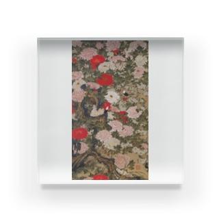 伊藤若冲《牡丹小禽図》 Acrylic Block