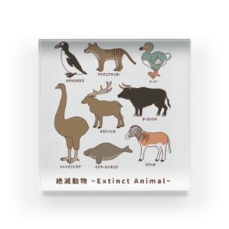 絶滅動物 Extinct Animal Acrylic Block