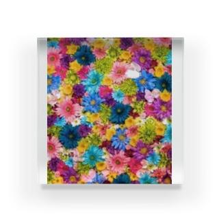 花園 Acrylic Block