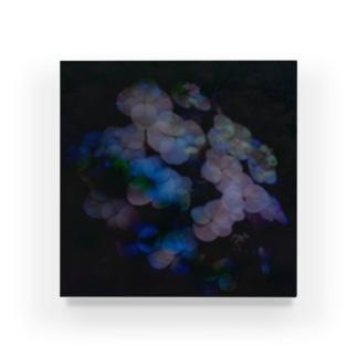 黒に浮かぶ紫陽花 Acrylic Block