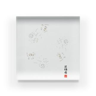 【金魚】花房頂天眼~巴~ アクリルブロック