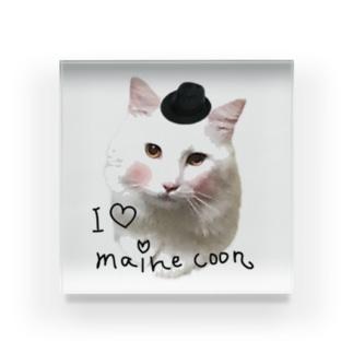 I  ♡Maine Coon Acrylic Block