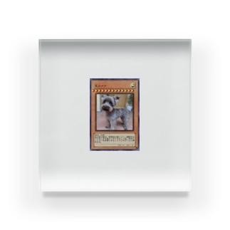 冥犬マナコレクション Acrylic Block