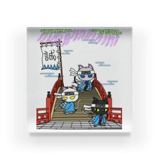 にゃーにゃー組*藤と太鼓橋で待つ! Acrylic Block