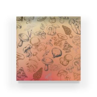キノコ!キノコ!キノコ‼︎ Acrylic Block