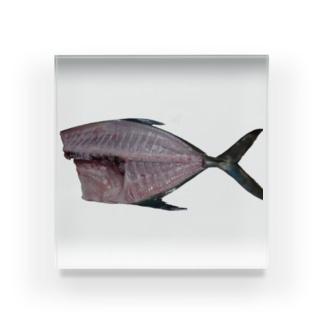 捌いた魚 Acrylic Block