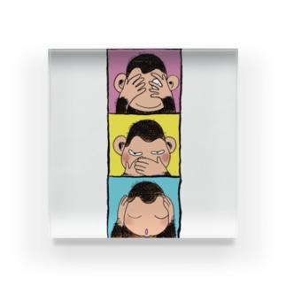 さんサルズ Acrylic Block