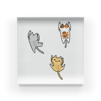這い上がる猫たち Acrylic Block