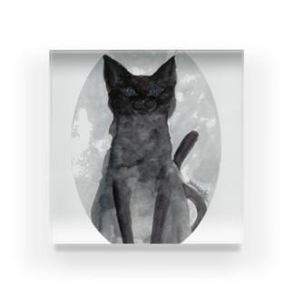 May Black cat Acrylic Block
