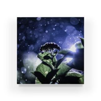 雨のライトアップと紫陽花 Acrylic Block