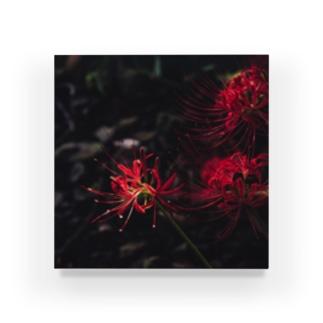 暗闇の彼岸花 Acrylic Block