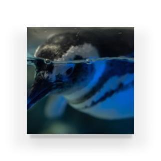 ウォーターペンギン Acrylic Block