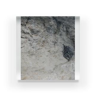 断崖絶壁シリーズ Acrylic Block