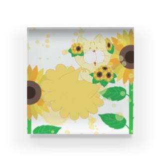 夏だよ!ひまわりの妖精 Acrylic Block